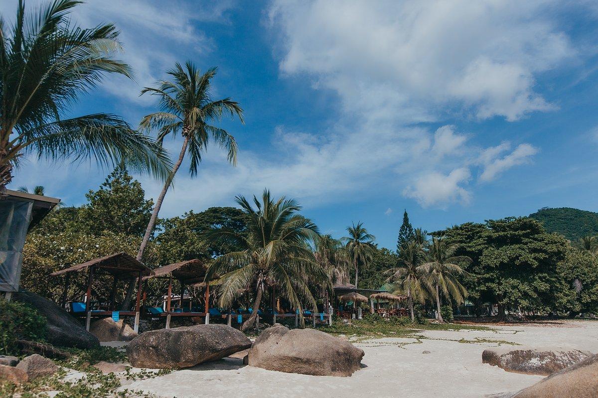 Silver Beach Koh Samui Strandansicht mit Blick auf Kokospalmen und ein Strandrestaurant