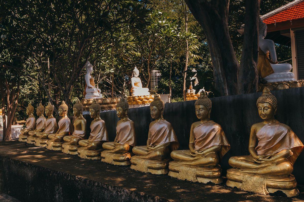 Goldene Buddha Statuen in einer Reihe Wat Khao Chedi Tempel Koh Samui -